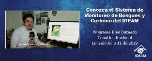 Sistema de Monitoreo de Bosques y Carbono del IDEAM